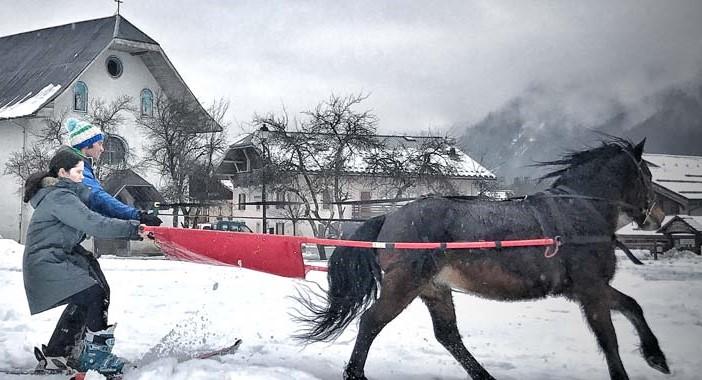 Les Houches Chamonix Mont Blanc Frankrijk